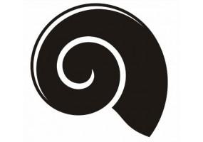 Sticker coquillage noir et blanc
