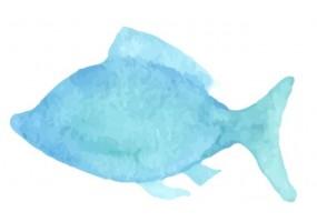 Sticker coquillage poisson
