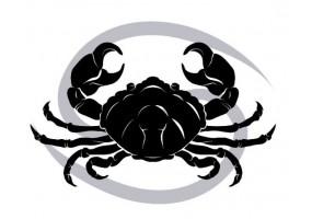 Sticker signe du zodiaque noir
