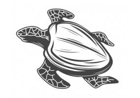 Sticker marin tortue