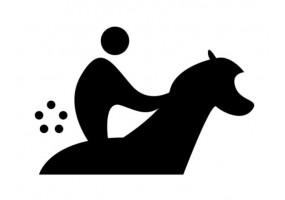 Sticker sport équitation