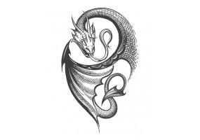 Sticker dragon gris