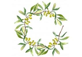 Sticker cuisine olive feuille