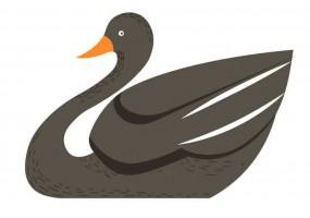 Sticker Australie canard