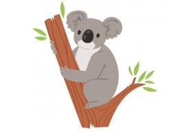 Sticker Australie koala