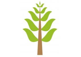 Sticker Australie arbre