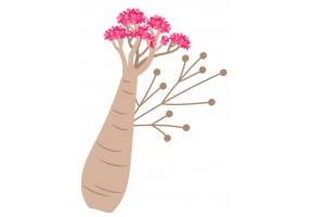 Sticker Australie fleur rose