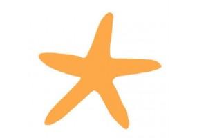 Sticker bébé étoile de mer