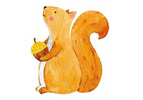 Sticker animaux écureuil