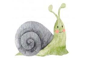 Sticker animaux escargot vert