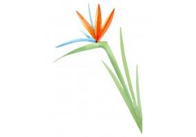 Sticker animaux feuille verte orange bleu