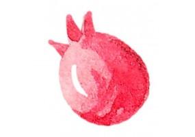Sticker animaux fruit
