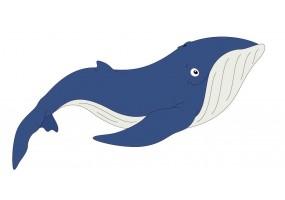 Sticker baleine bleue