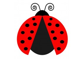 Sticker grosse coccinelle