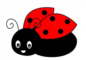 Sticker vol coccinelle