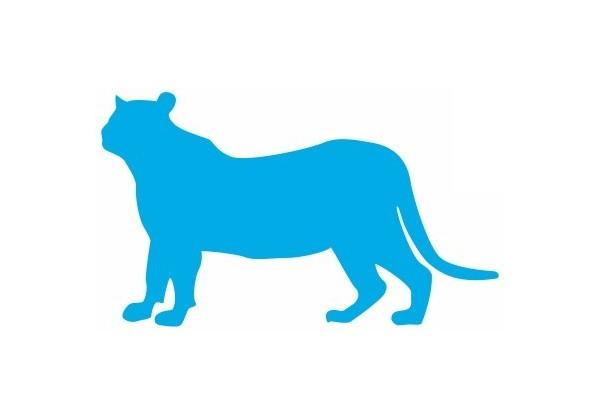 Autocollant sticker voiture chambre decoration mural chien ecossais scottish dog