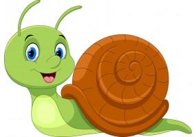 Sticker escargot vert content