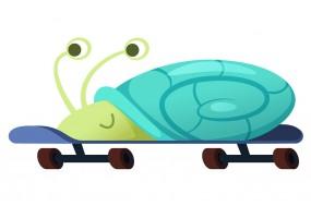 Sticker escargot vert roues skate