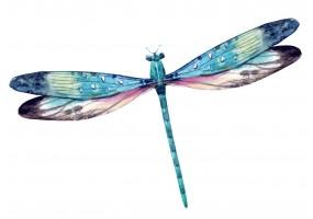 Sticker libellule bleue