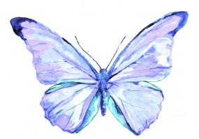 Sticker papillon bleu clair