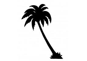 Sticker mural palmier