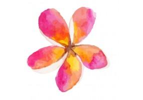 Sticker fleur aquarelle