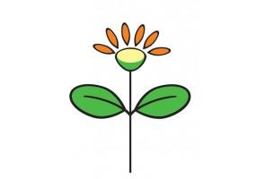 Sticker fleur pétales