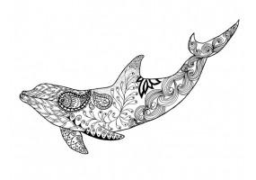 Sticker dauphin dessin