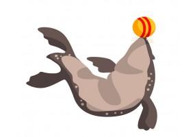 Sticker otarie ballon