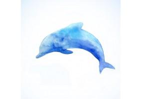 Sticker muraux dauphin aquarelle