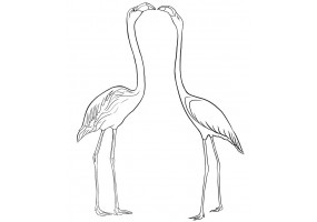 Sticker flamants roses blanc