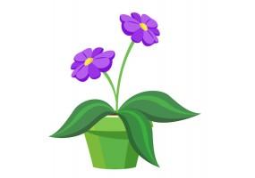 Sticker fleurs violette