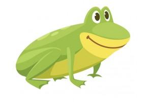 Sticker grenouille jaune verte