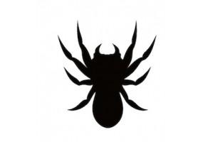 Sticker halloween araignée