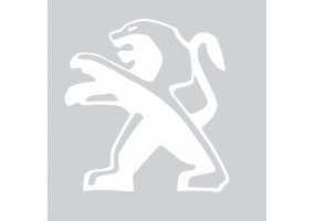 Sticker PEUGEOT sport gris blanc