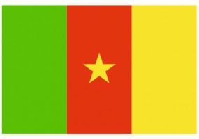 Sticker drapeau Cameroun