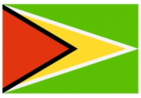 Sticker drapeau Guyana