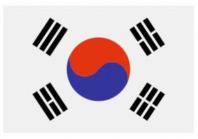 Sticker drapeau Corée-du-Sud