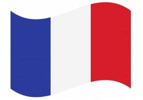 sticker drapeau Flottant Guinée-Francaise