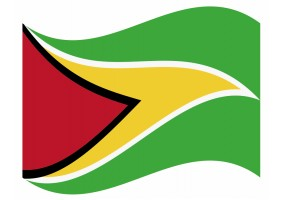 sticker drapeau Flottant Guyana