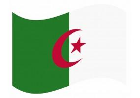 sticker drapeau Flottant Algerie