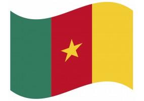 sticker drapeau Flottant Cameroun