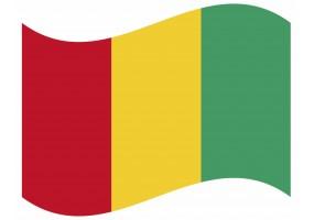 sticker drapeau Flottant Guinée