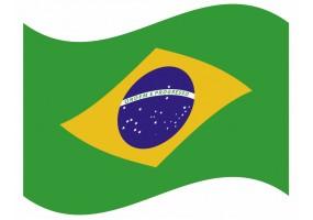 sticker drapeau Flottant Bresil