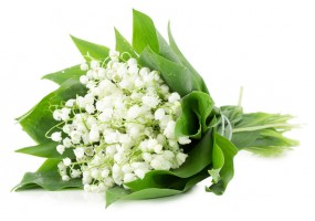 Sticker muguet