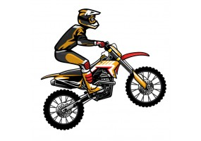 Sticker Moto gross
