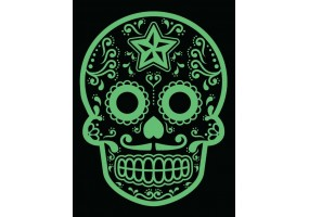 Sticker tete de mort vert