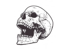 Sticker tete de mort bouche ouverte