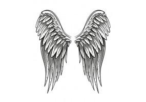 Sticker ange aile noir et blanc