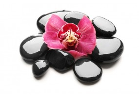Sticker zen galet fleur rose